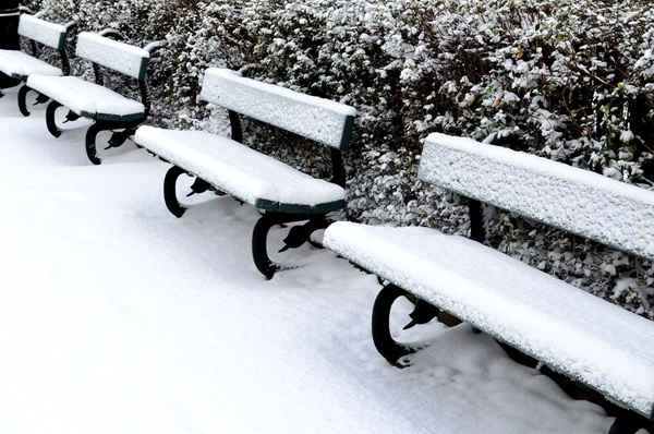 bench and snow