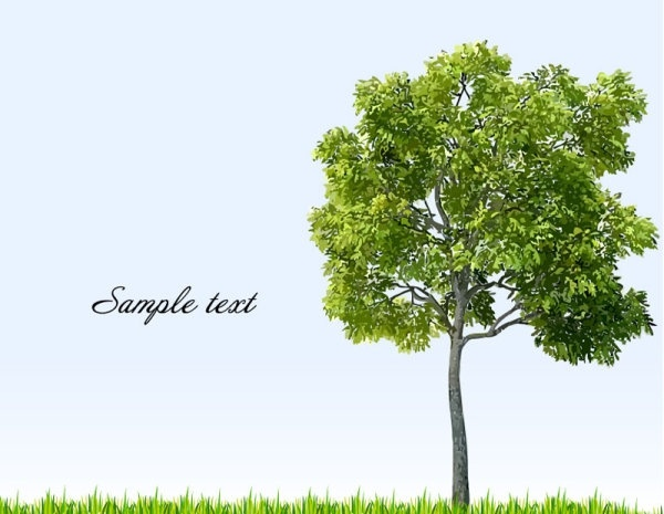 tree free vector download 5207 free vector for