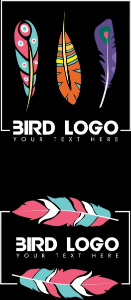 bird feathers logo sets colorful flat icons decor
