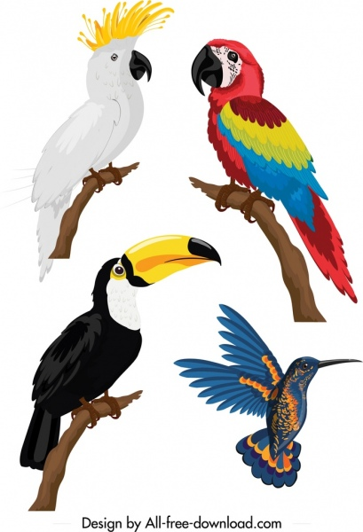 Birds Icons Parrot Woodpecker Sketch Colorful Design Free Vector In Adobe Illustrator Ai Ai Format Encapsulated Postscript Eps Eps Format Format For Free Download 3 41mb