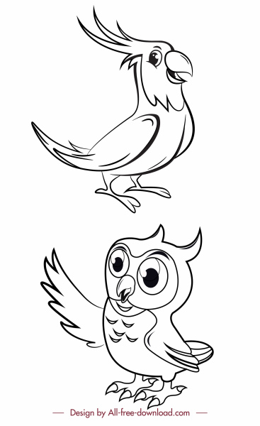 birds species icons black white parrot owl sketch