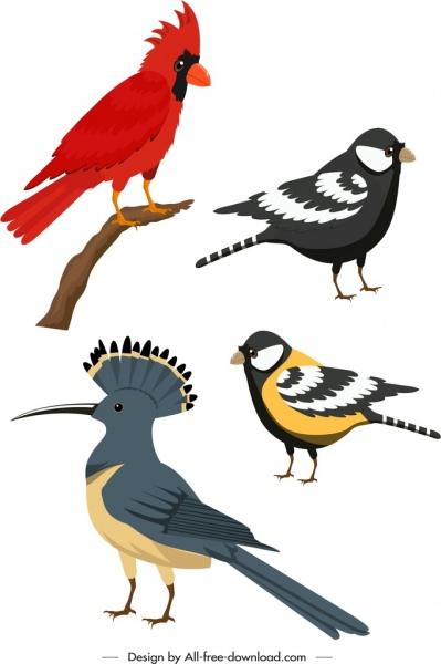 birds species icons colorful cartoon sketch