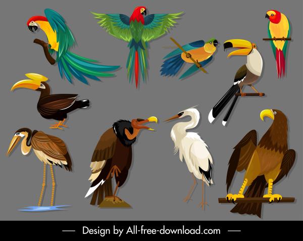 birds species icons colorful sketch