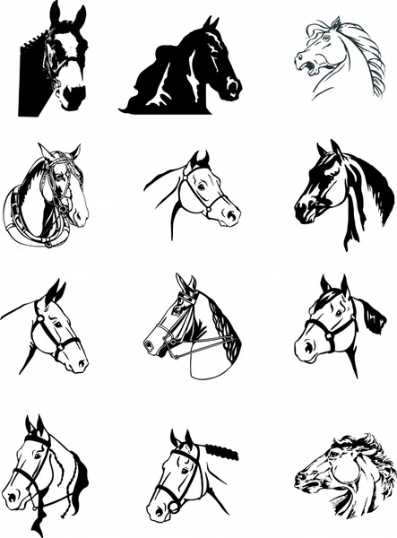 horse icons head design classical black white sketch