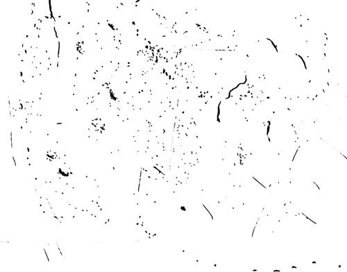 Black speckle texture vector Free vector in Adobe Illustrator ai
