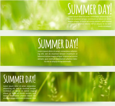 blurred green summer banner vector