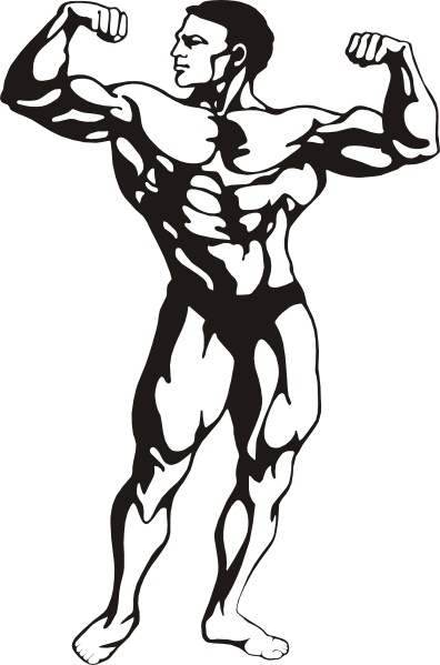 Bodybuilding free vector download for