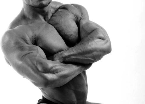 bodybuilder 03 hd picture