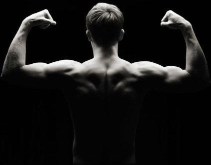 bodybuilder 05 hd picture