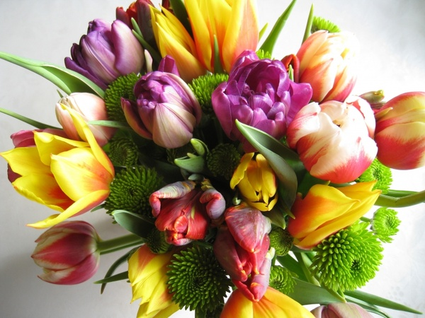 Happy Birthday Flowers Bouquet Free Stock Photos Download 11 733 Free Stock Photos For Commercial Use Format Hd High Resolution Jpg Images
