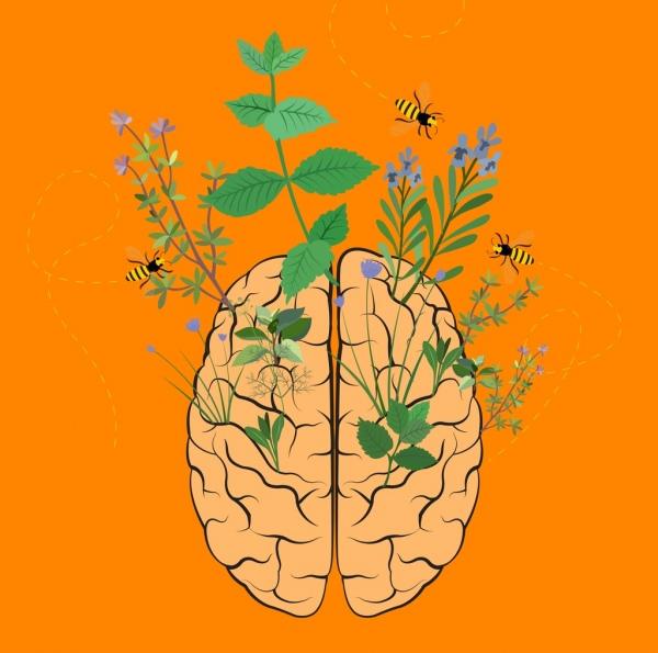 brain development background honeybee wild flowers icons