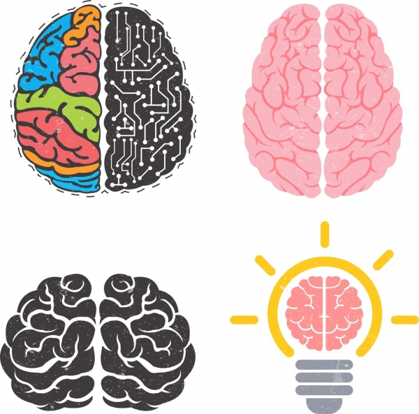 brain icons collection colored flat design various shapes
