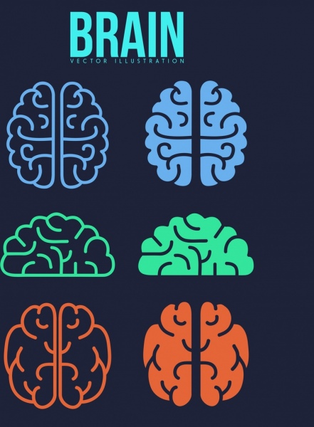 brain icons collection colored flat shapes