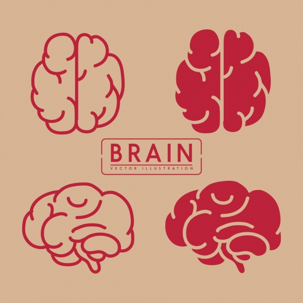 brain icons collection red flat design