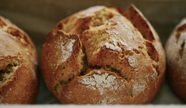 closeup of delicious round bread