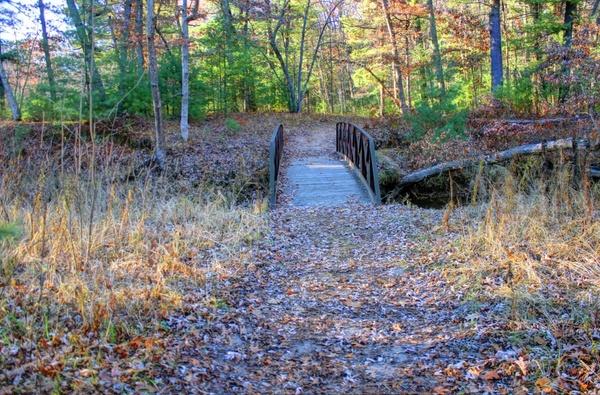 bridge at roche a cri state park wisconsin