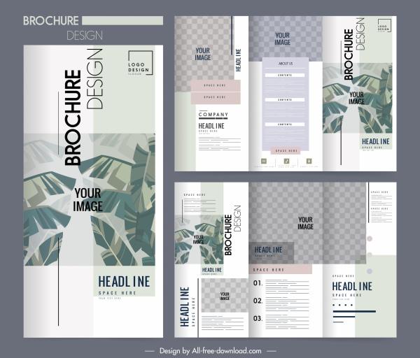 brochure templates classic elegant leaves decor
