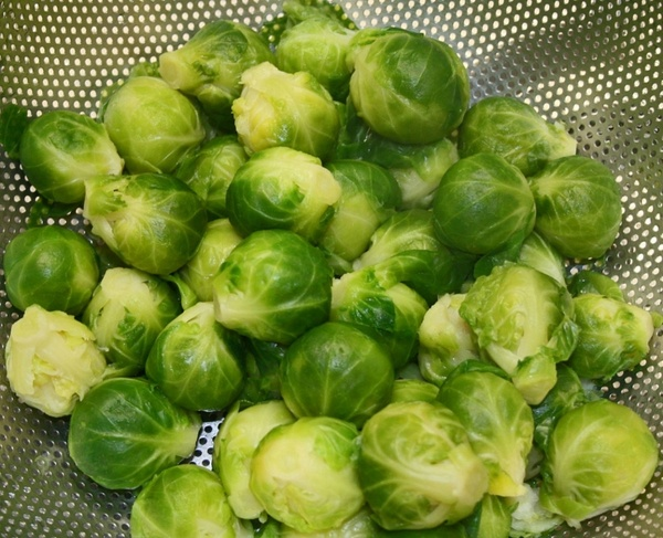 brussels sprouts vegetables kohl