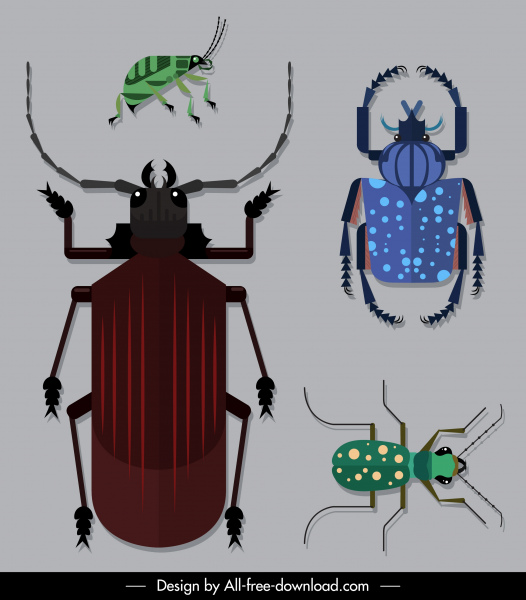 bug insects species icons colored flat sketch
