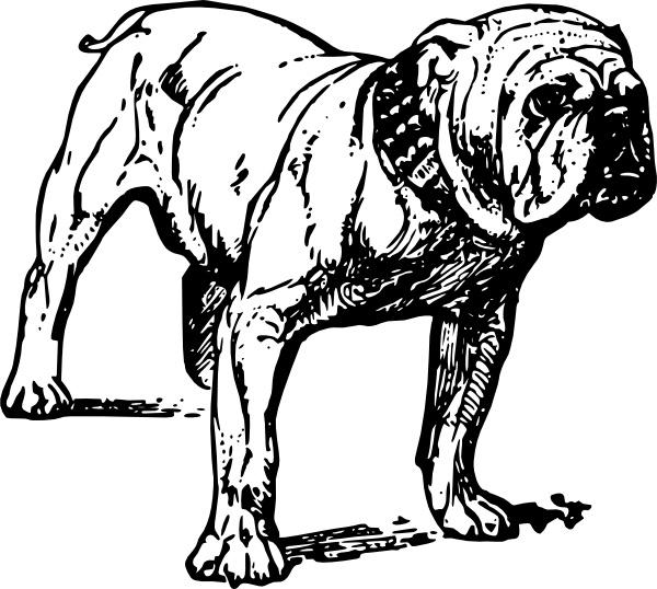 free bulldog vector free vector download (20 free vector) for