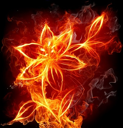 burning flowers picture 4