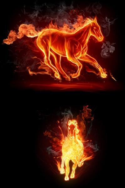 burning horse 01 hd films