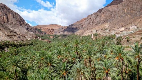 cactus canyon desert hill landscape mountain nature