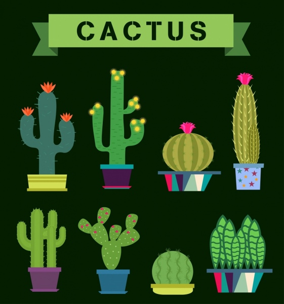 cactus icons collection various green types