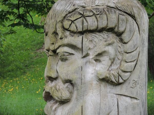 carved head wood the bearded