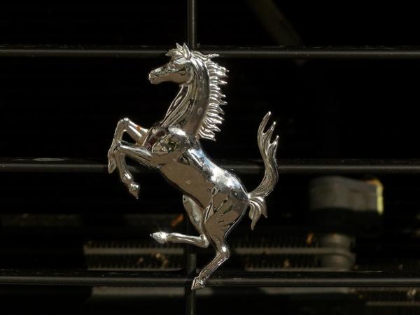 cavallino rampante ferrari seahorses