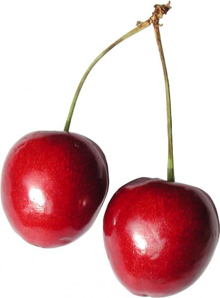 Cherries fruit sweet Free stock photos in JPEG (.jpg) 886x1112 format for  free download 55.59KB