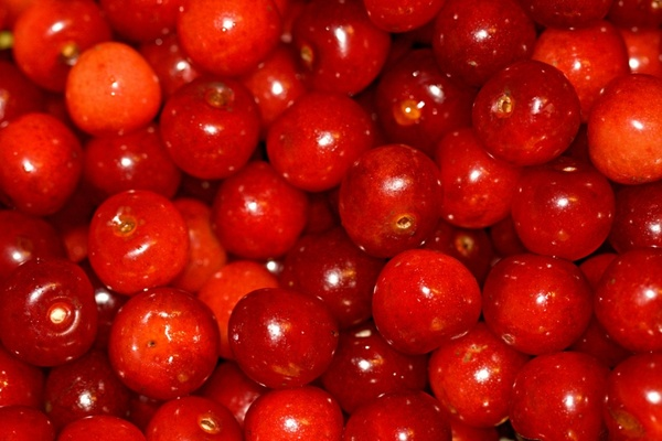 cherries ready to use