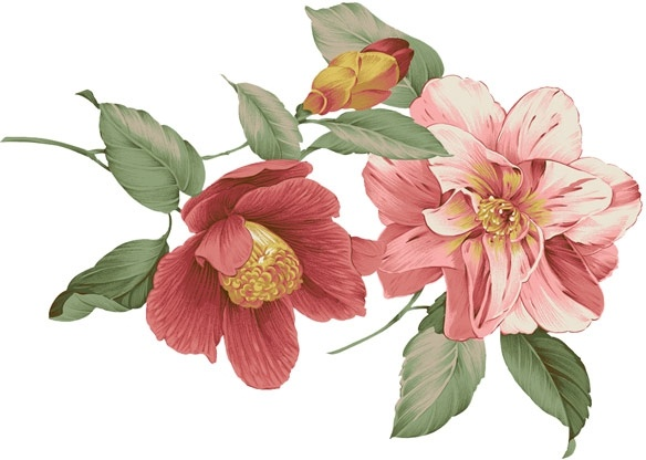 china wind floral patterns psd layered