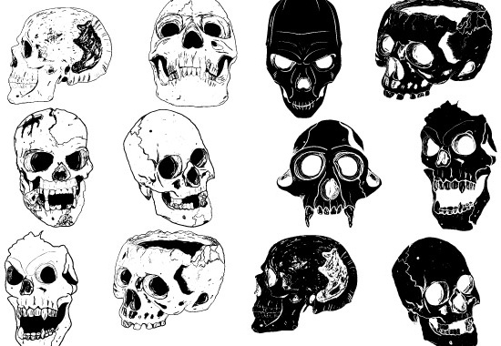 Skull And Cross Bones Free Vector Download 1 376 Free