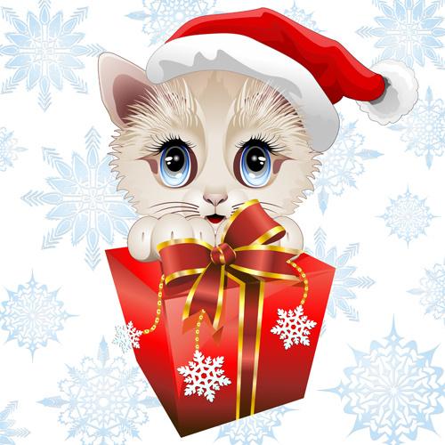 Funny Cat Cartoon Video Download