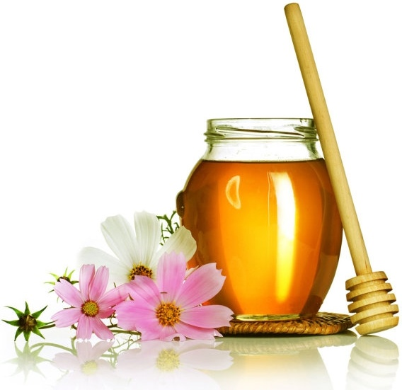 chrysanthemum tea 05 hd picture