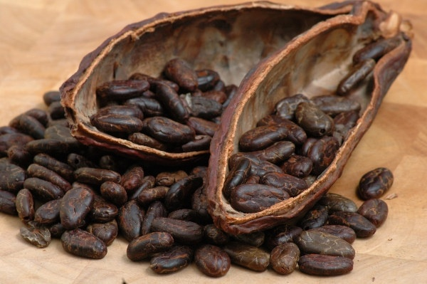 coffee beans fruit hd picture 2