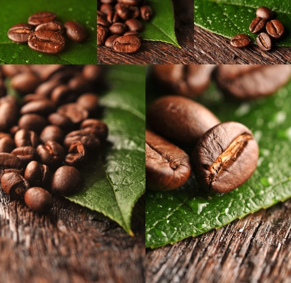 coffee beans highdefinition picture
