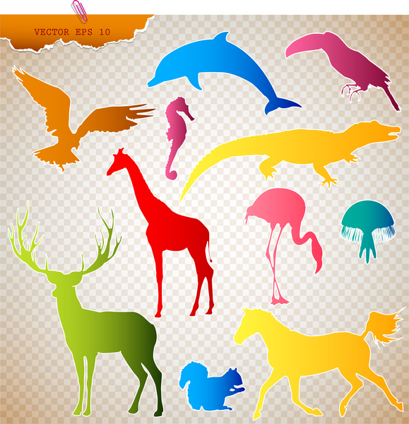 colored animals silhouettes vector illustration