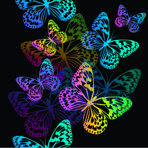 free colorful butterfly vector free vector download