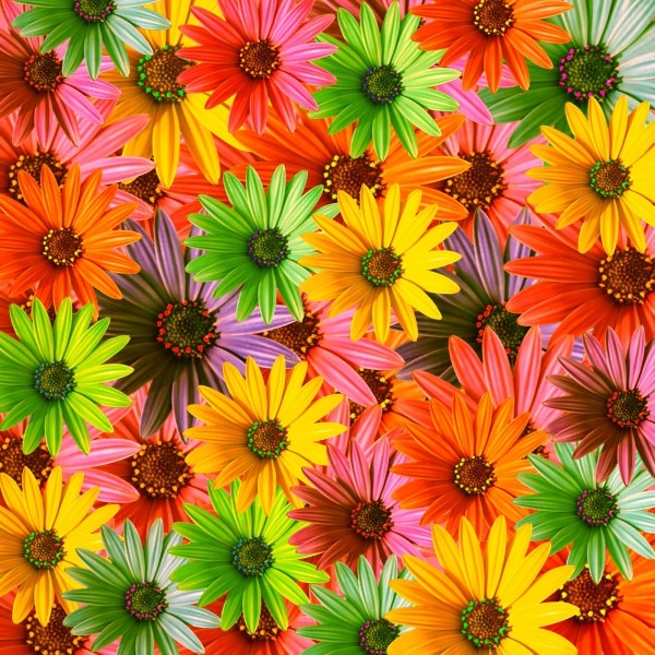 colorful flowers background of highdefinition picture