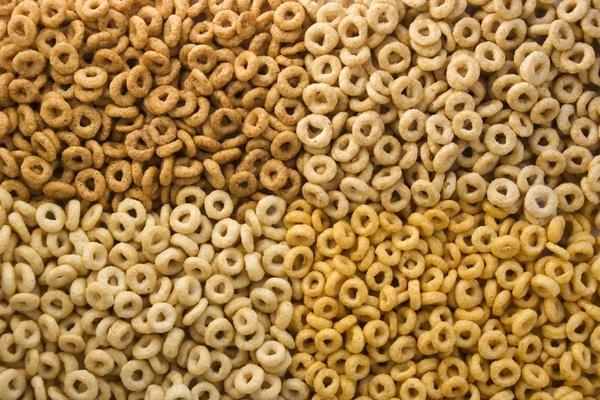 corn oats rice wheat