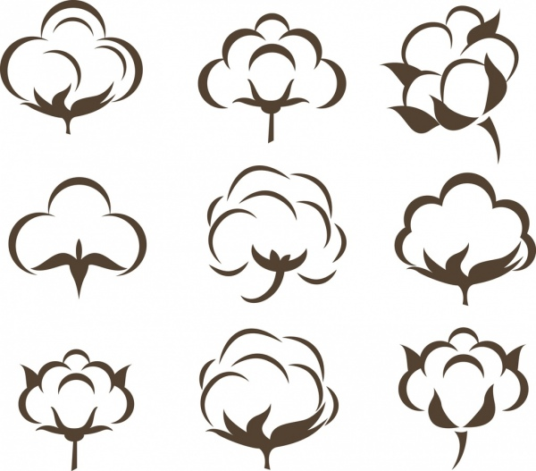 cotton flowers icons collection various flat sketch