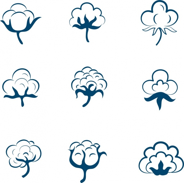 cotton flowers icons collection various shapes sketch
