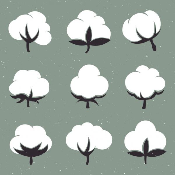 cotton flowers isolation flat black white design
