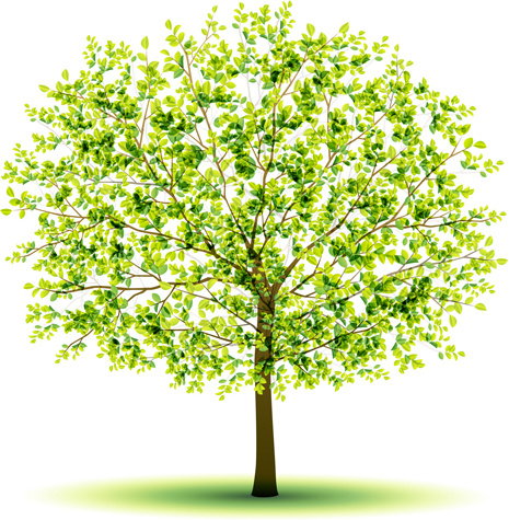 creative green tree design vector graphics