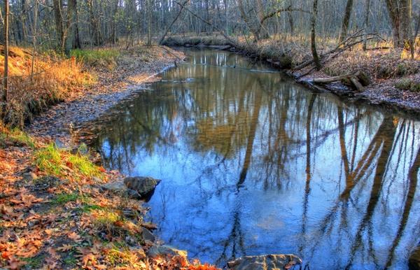 curve in the stream at roche a cri state park