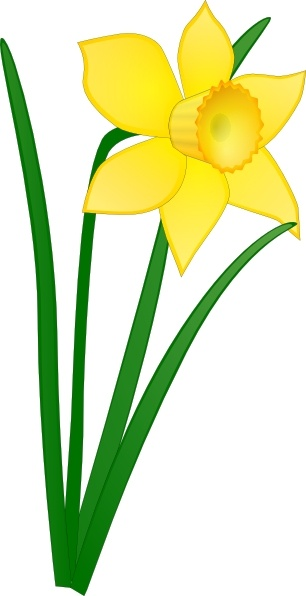 daffodil clip art free vector in open office drawing svg svg rh all free download com daffodil clip art images daffodil clip on lights