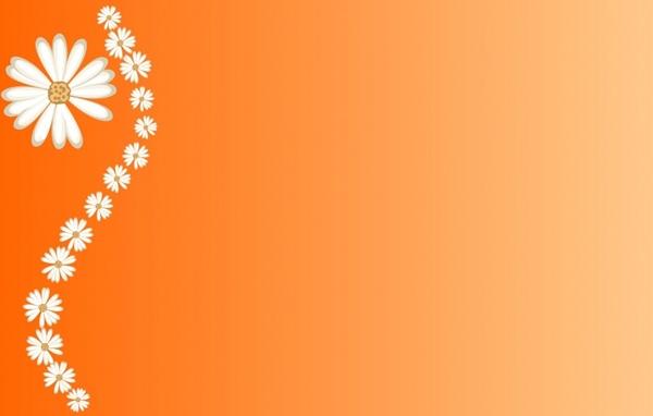 daisies on orange background