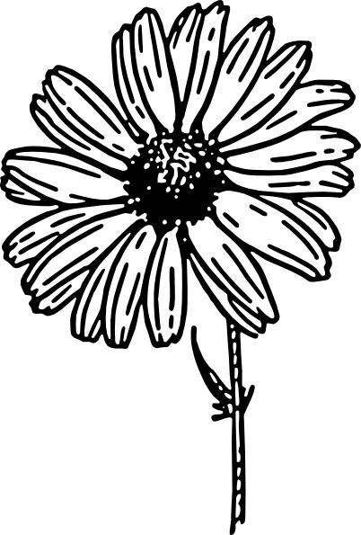 Daisy clip art Free vector in Open office drawing svg (  svg